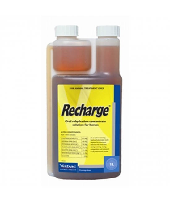 Recharge Horse Electrolyte 1Litre
