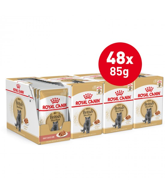 Royal Canin British Shorthair In Gravy Adult Over 12 Months Pouches Wet Cat Food 85gm x 48