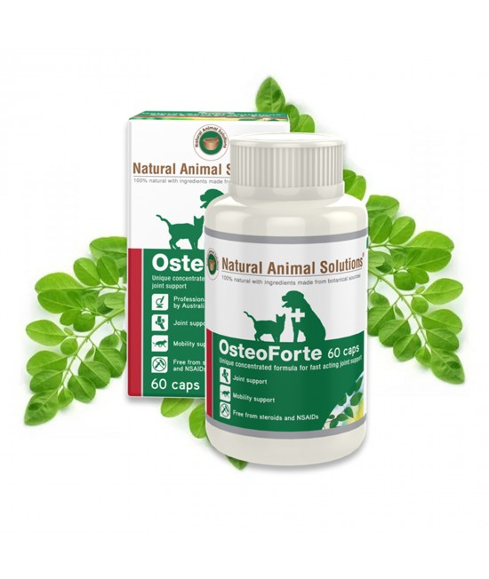 Natural Animal Solutions Osteoforte For Dogs And Cats 60 Caps